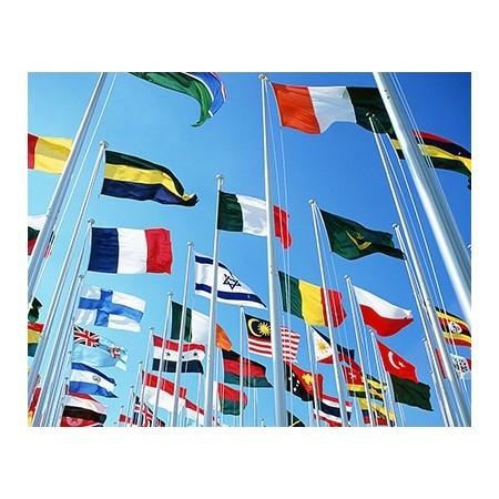 厂家定制各国国旗|专业定制各国国旗厂家