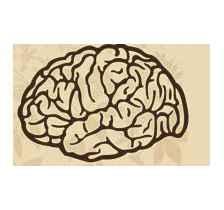 山东脑瘤康复
