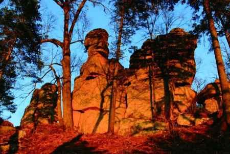 黑龙江亚布力奇石怪树