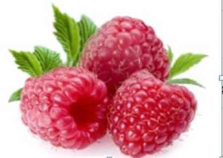 进口美国红树莓浓缩汁销售