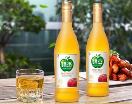广东发酵型苹果汁饮料
