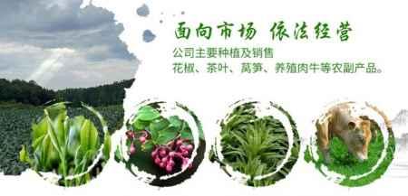 德江生态种植农业
